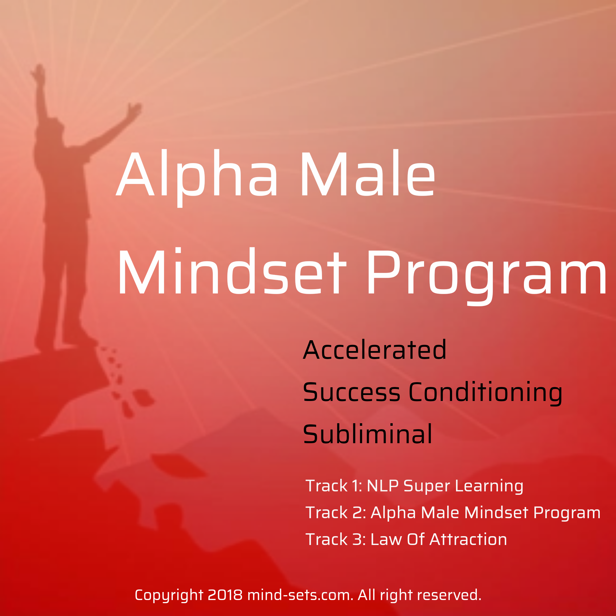 Alpha Male Mindset Program