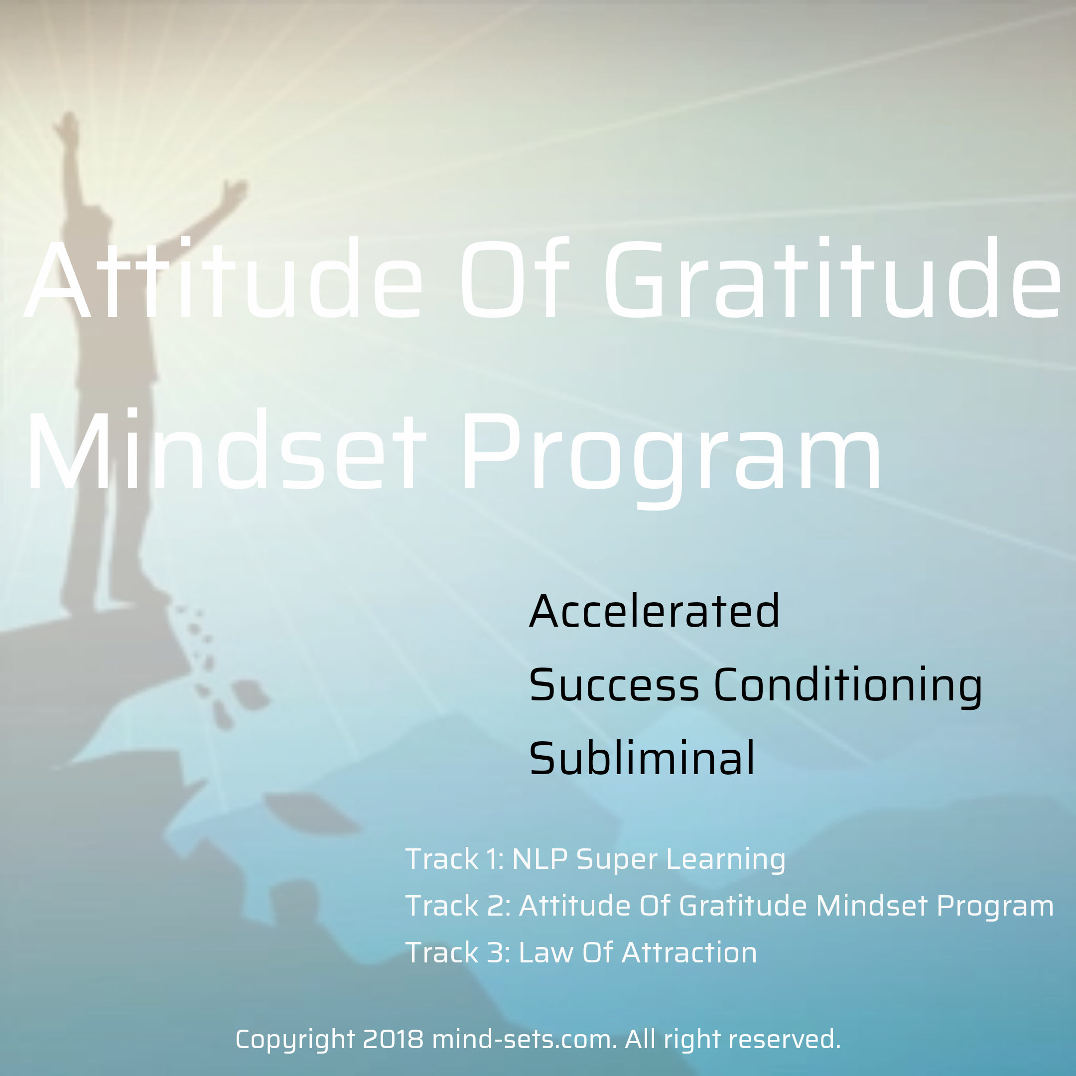 Attitude Of Gratitude Mindset Program
