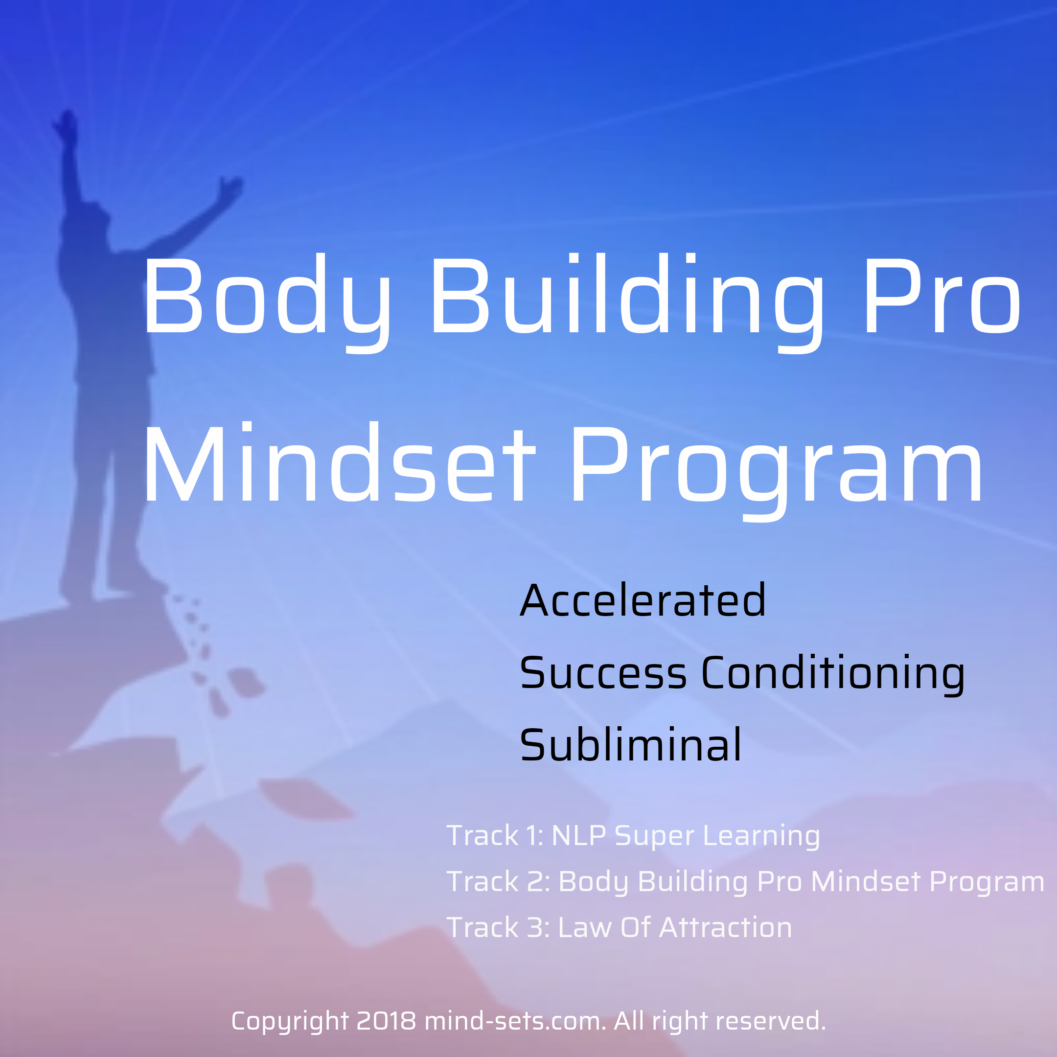 Body Building Pro Mindset Program