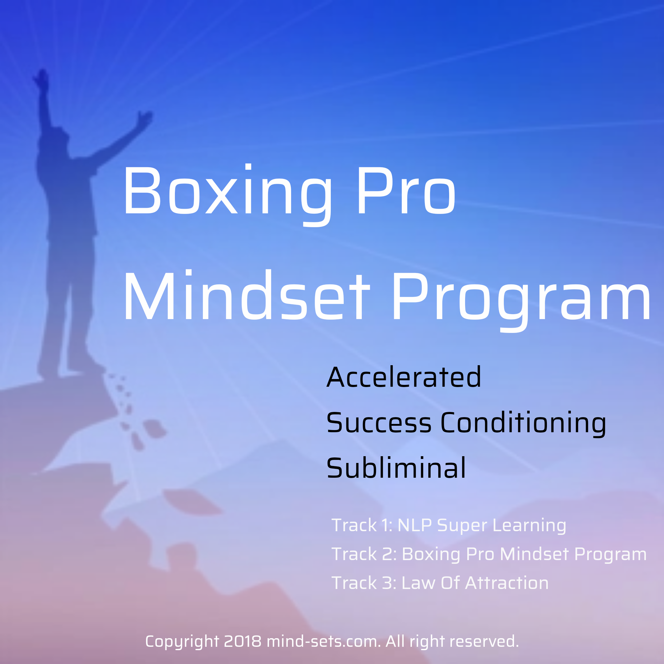 Boxing Pro Mindset Program