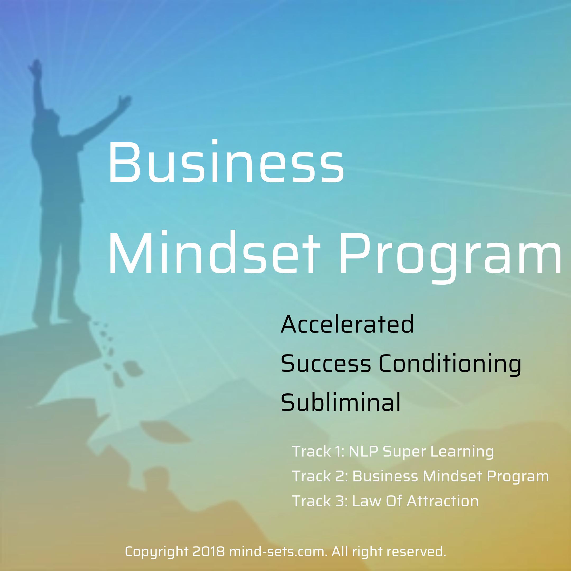Business Mindset Program