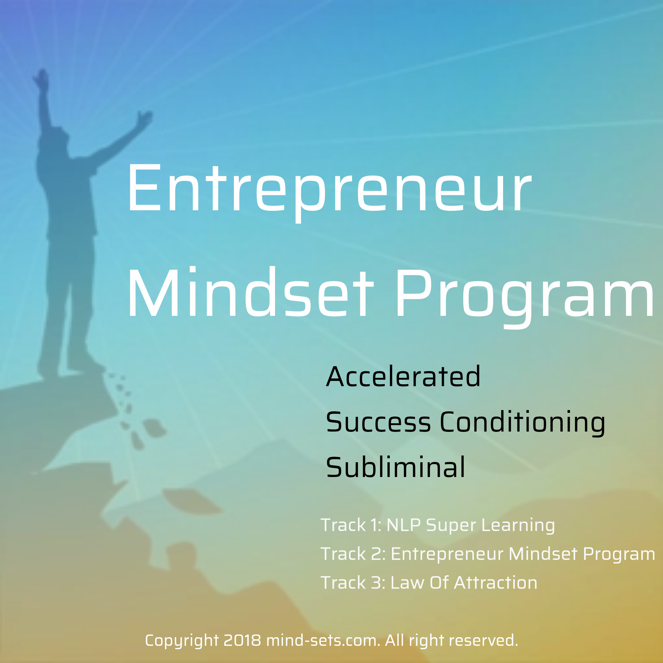 Entrepreneur Mindset Program