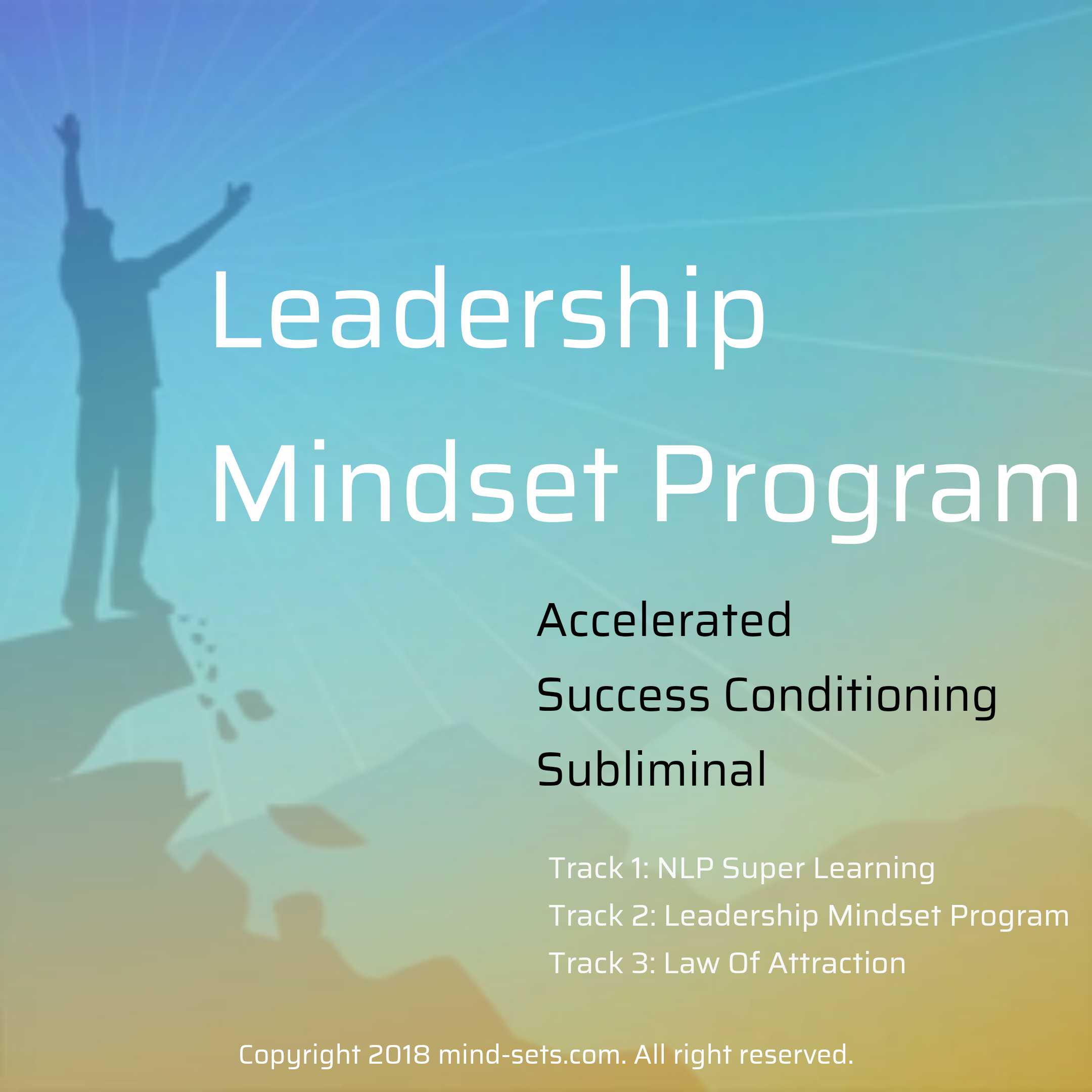 Leadership Mindset Program