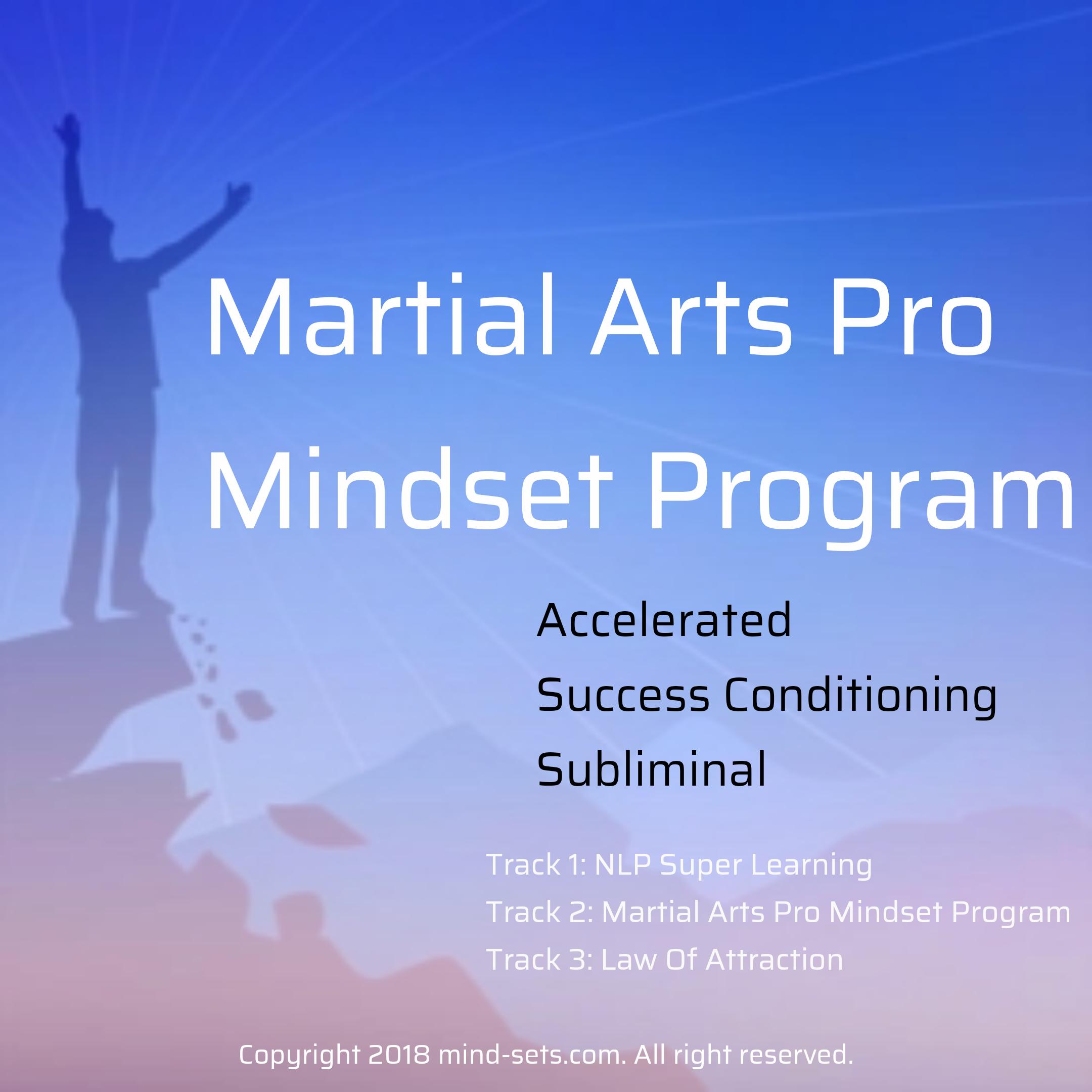 Martial Arts Pro Mindset Program