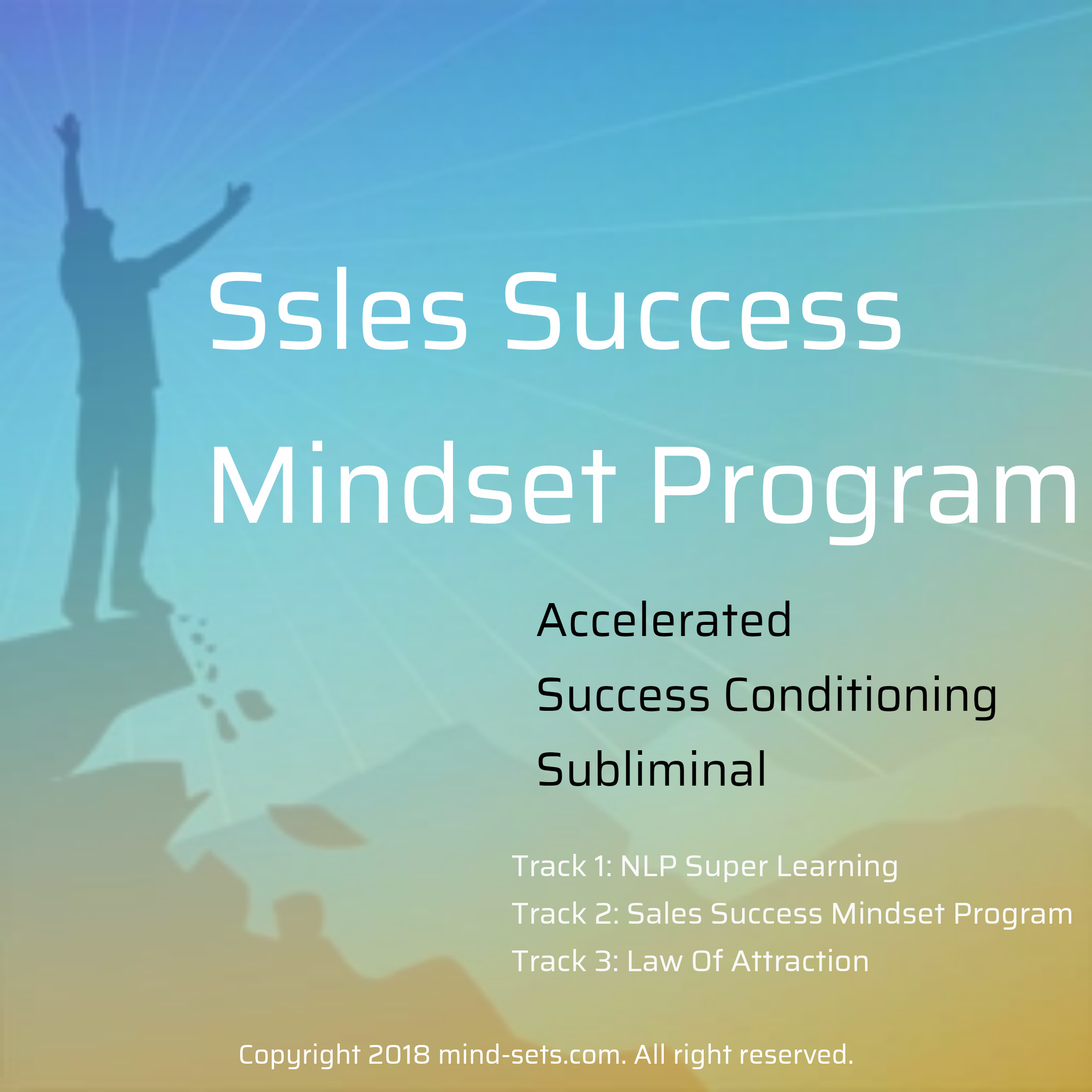 Sales Success Mindset Program