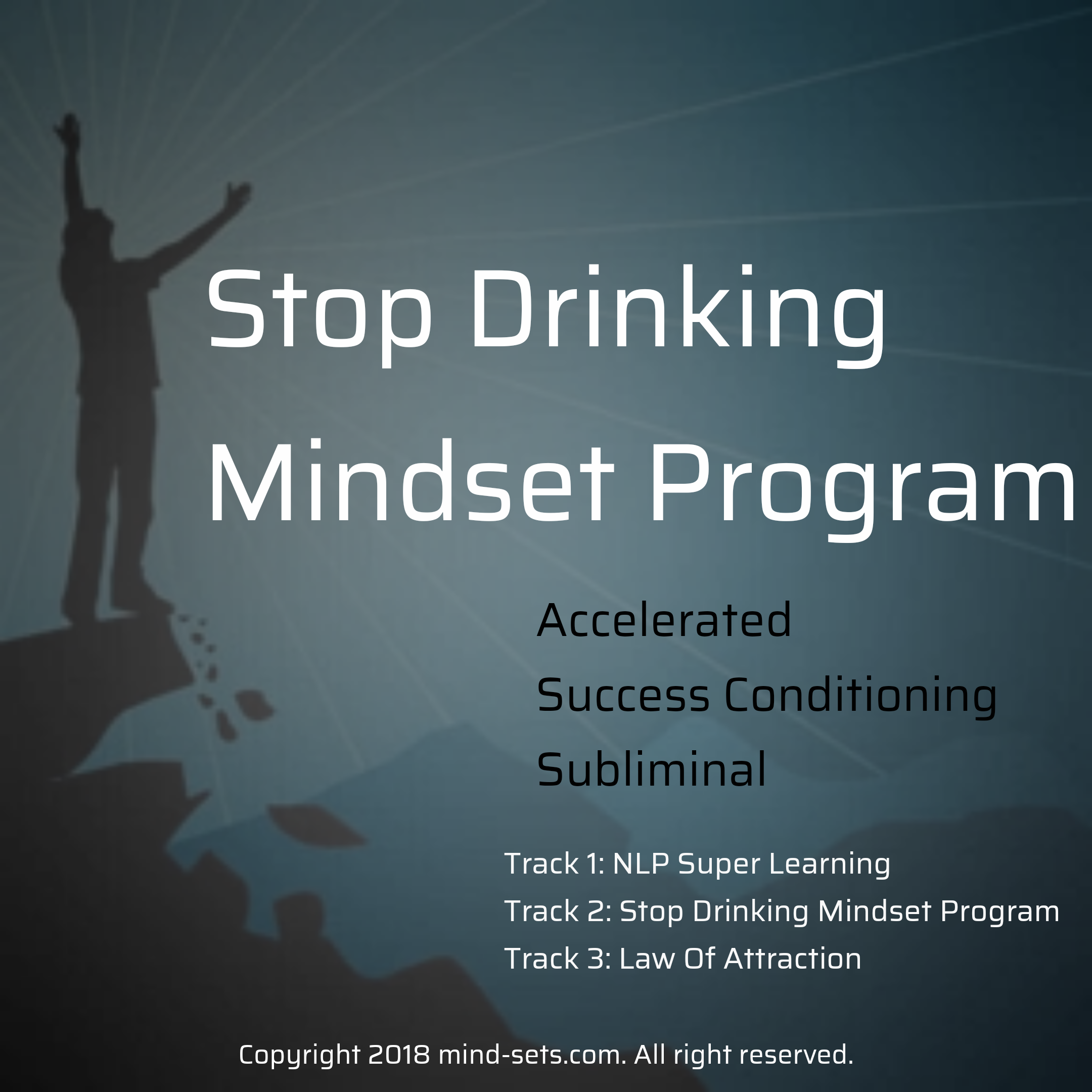 Stop Drinking Mindset Program
