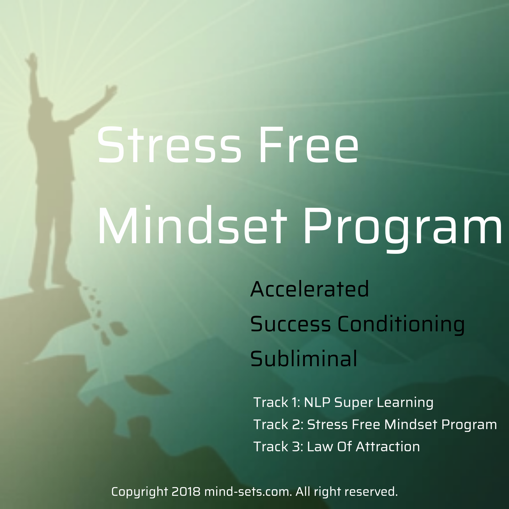 Stress Free Mindset Program